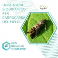 Dissuasore BioDinamico per la Carpocapsa del Melo - 1 lt