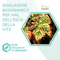 Dissuasore BioDinamico per la Mal dell'esca della vite - 1 lt