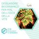 Dissuasore BioDinamico per la Mal dell'esca della vite- 1 lt