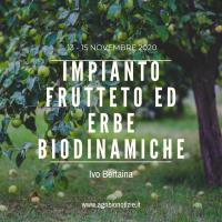 IMPIANTO FRUTTETO E ERBE BIODINAMICHE