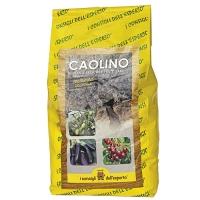 Polvere di Caolino - Barriera naturale mosca olivo/alberi da frutto