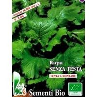 RAPA SENZA TESTA - BIOSEME 3628