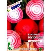 BIETOLA DA ORTO CHIOGGIA - BIOSEME 0701