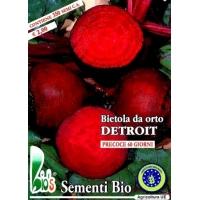 BIETOLA DA ORTO DETROIT 2 - BIOSEME 0724