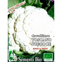 CAVOLFIORE TOSCANO PRECOCISSIMO - BIOSEME 1101