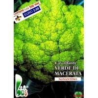 CAVOLFIORE VERDE DI MACERATA - BIOSEME 1105