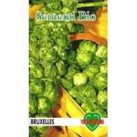 CAVOLETTO DI BRUXELLES - BIOSEME 1301
