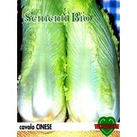 CAVOLO CINESE MICHIHLI - BIOSEME 1302