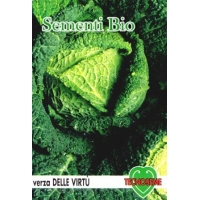 CAVOLO VERZA VIRTU' - BIOSEME 1515