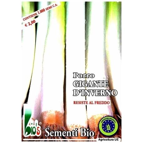 PORRO GIGANTE D'INVERNO - BIOSEME 3319