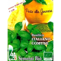 BASILICO ITALIANO CLASSICO - BIOSEME 0518