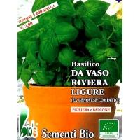 BASILICO COMPATTO DA VASO - BIOSEME 0540