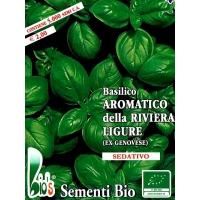 BASILICO AROMATICO DELLA RIVIERA LIGURE - BIOSEME 0530