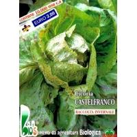 CICORIA CASTELFRANCO - BIOSEME 1823