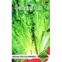 ENDIVIA RICCIA ROMANESCA - BIOSEME 2104