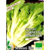 ENDIVIA SCAROLA CORNETTO DI BORDEAUX - BIOSEME 2207