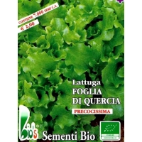 LATTUGA FOGLIA DI QUERCIA- BIOSEME 2750