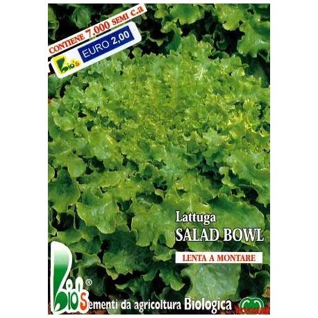 LATTUGA VERDE SALAD BOWL- BIOSEME 2752
