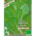 LATTUGA BIONDA FOGLIA LISCIA- BIOSEME 2753