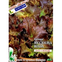 LATTUGA ROSSA SALAD BOWL- BIOSEME 2758