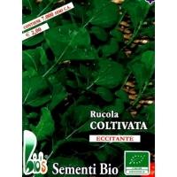 RUCOLA COLTIVATA - BIOSEME 3852