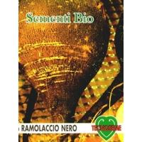 RAFANO NERO TONDO D'INVERNO - BIOSEME 3550